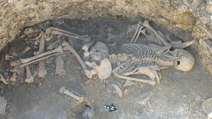 hith-Duropolis-1-skeleton-E